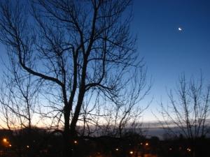 Dawn in my backyard