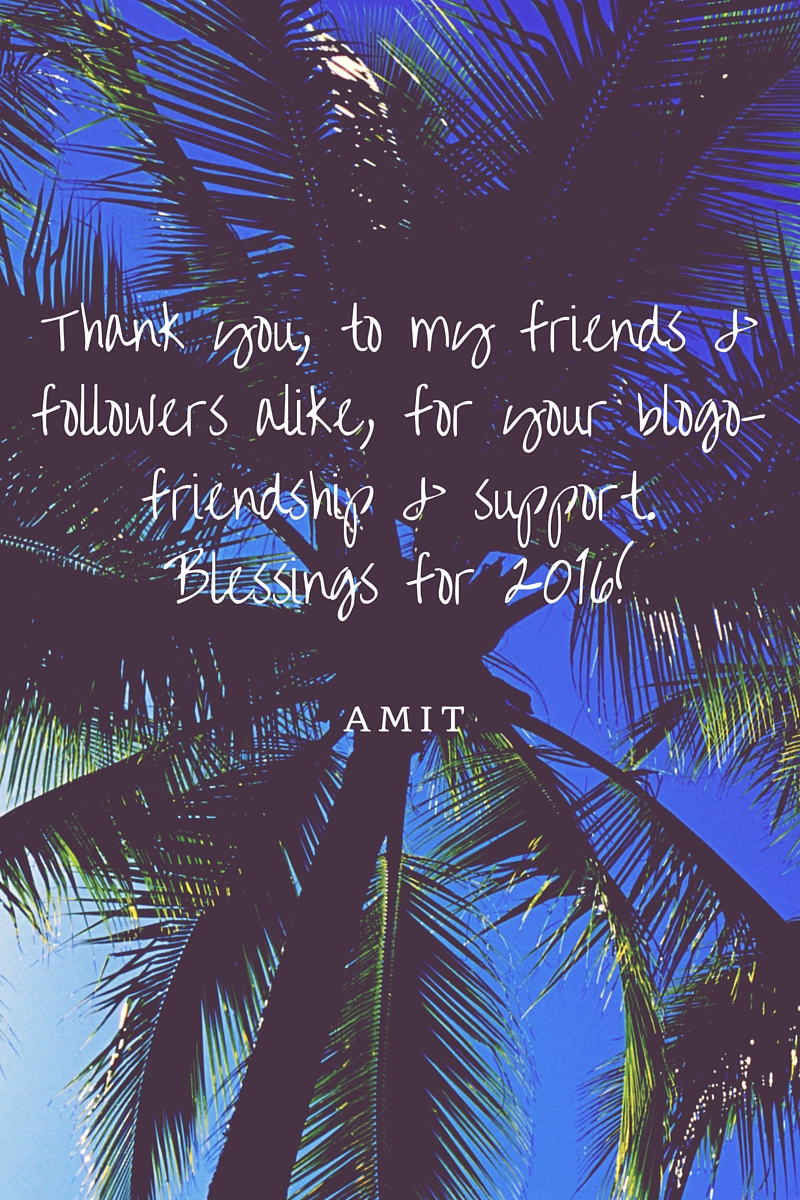 Thank you, to all of you,friends & followers alike,for your blogo-friendship & support. Blessings for 2016!
